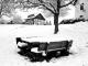 Scheuren-Winter-20210109_172953